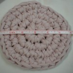 Smaller Trivet Made With Premier Craft-Tee Yarn