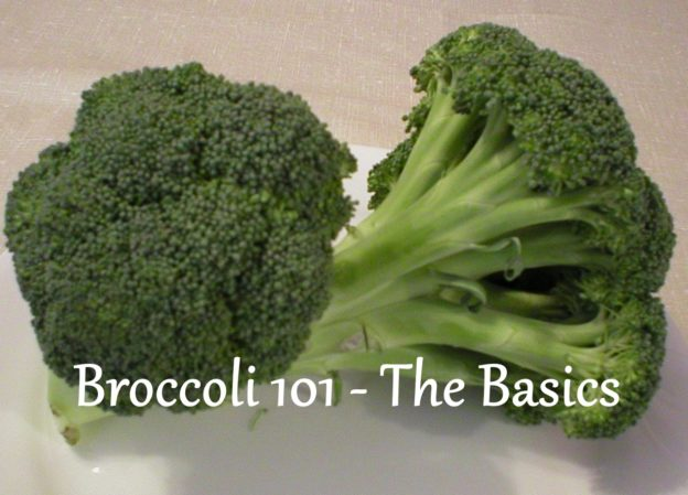Broccoli 101 The Basics